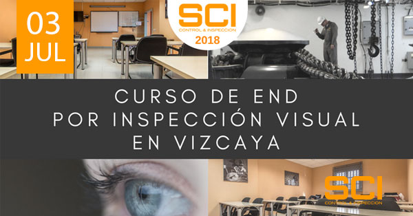 end inspeccion visual vizcaya